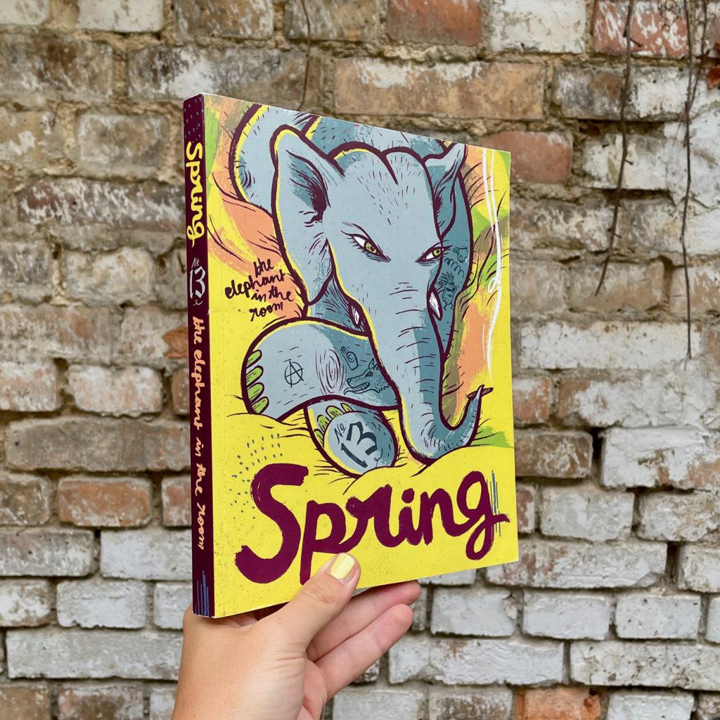Eine Hand hält das SPRING Magazin #13 the elephant in the room vor einer Steinwand.